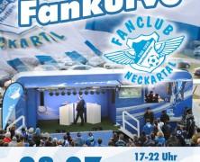 """""""8. TSG Fankurve"""" in Neckargemünd"""