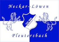 logo neckar-loewen