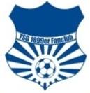 logo_tsg99er_hoffenheim